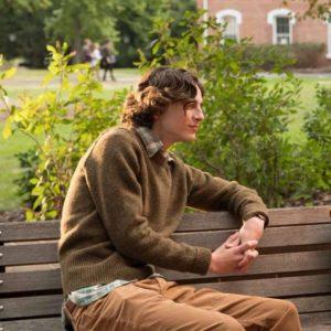 Timothée Chalamet Brown Sweater
