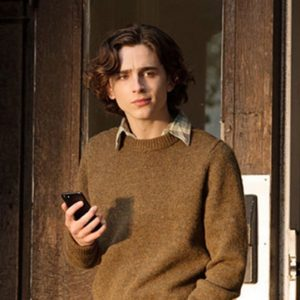 Timothée Chalamet Brown Sweater Gatsby A Rainy Day In New York Sweater